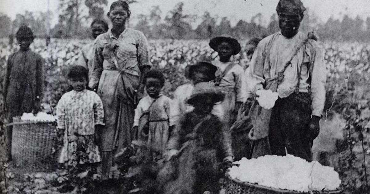 slavery myths